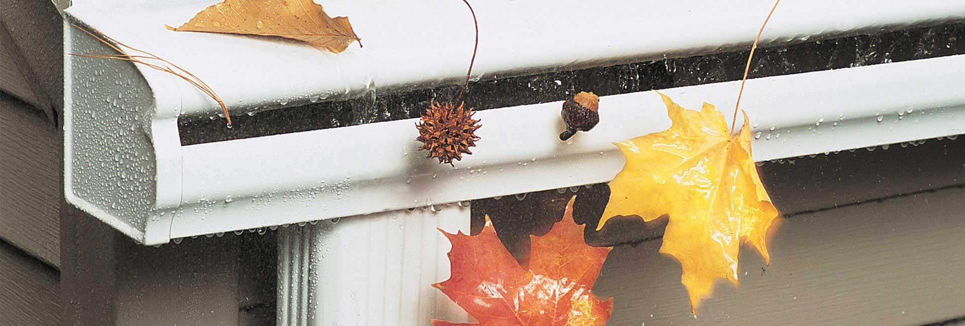 leaf filter gutter kitchener